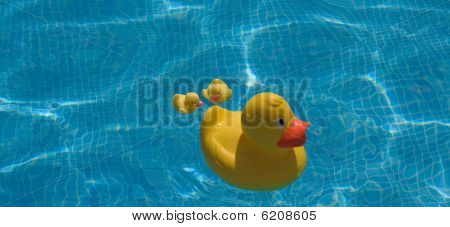 Family Of Three Yellow Plastic Bath Toy Duck