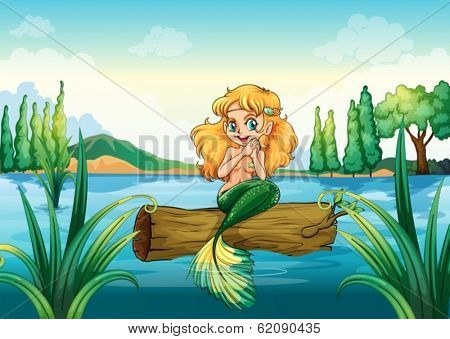 Illustration of a mermaid above the log