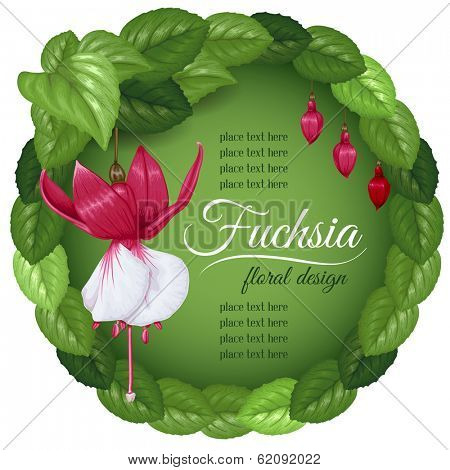 Wreath with leaves and beautiful flowers fuchsia. Vector illustration.