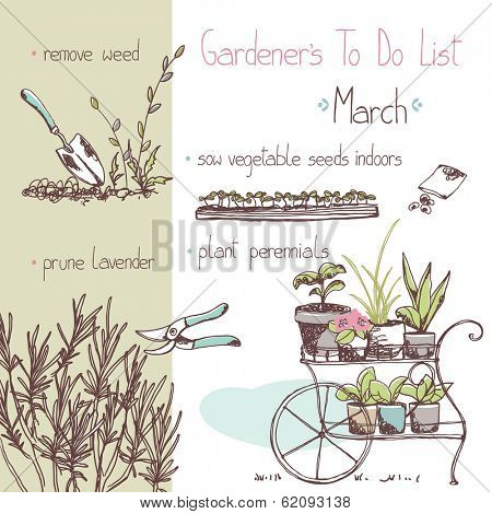 gardener`s to do list - march