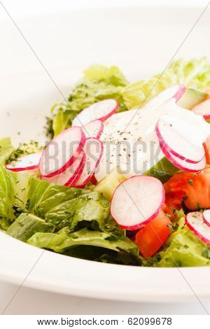 salad with radish