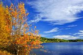 Lake and fall forest with colorful trees in Algonquin Park, Canada