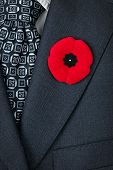 Red poppy lapel pin on suit jacket for Remembrance Day