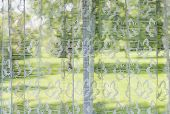 stock photo of lace-curtain  - Window with lace curtains looking out to green summer park - JPG