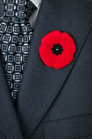 picture of lapel  - Red poppy lapel pin on suit jacket for Remembrance Day - JPG