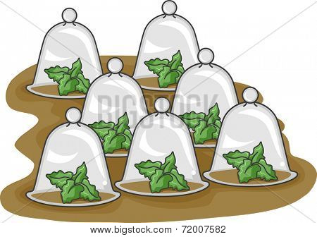 Illustration Featuring Plants Inside Glass Cloches