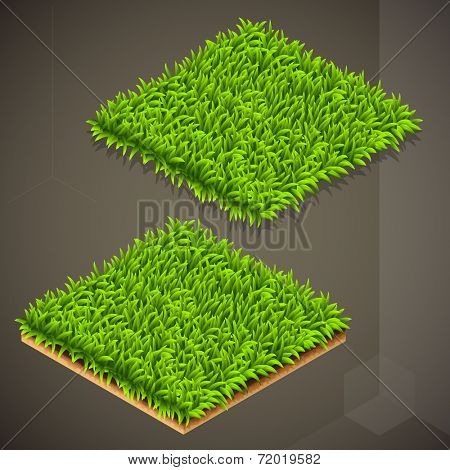 Vector illustration of the isometric grass tile