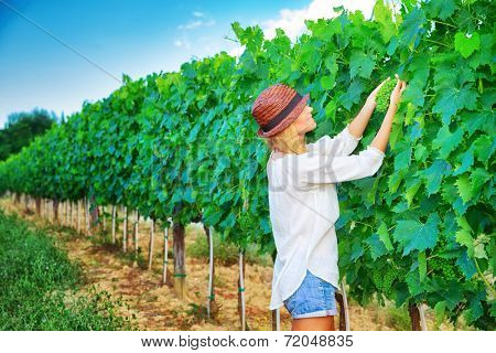 Farmer girl on Italian vineyard, cultivate grape, enjoying fruit harvest, agricultural field, winery industry, farming and agriculture concept