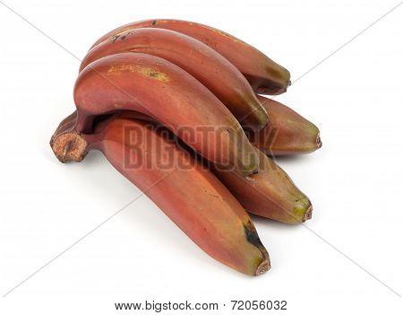 Bunch Of Red Bananas Fruit