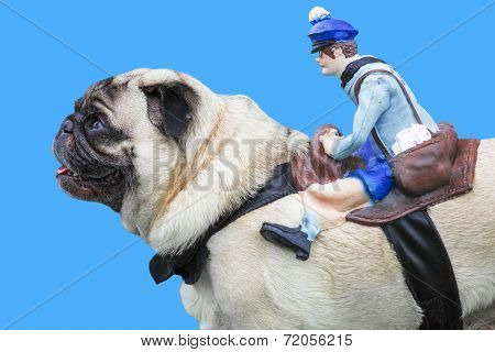 Pug Dog With Puppet Rider On Blue Background