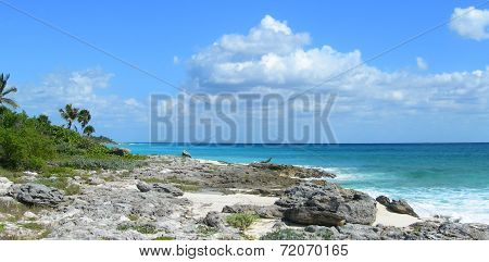 Caribbean beach at the Riviera Maya, Mexico