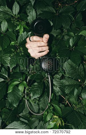 Hand holding an old telephone handset sticking out from the bushes