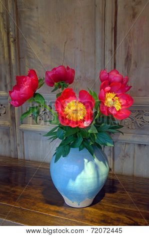 Red Gerera Daisy in a vase