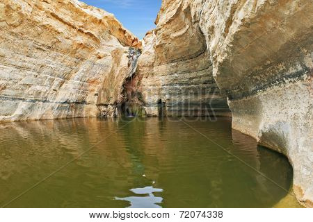 Unique canyon in the desert. Picturesque canyon Ein-Avdat in the Negev desert. Sandstone canyon walls form round bowl. Bowl waterfall reflects the sky