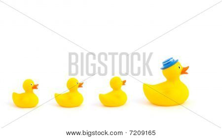 Yellow Toy Ducks