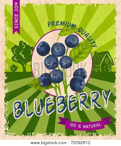 Blueberry retro poster