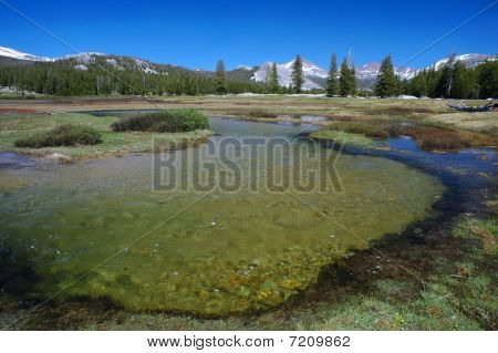 Tuolumne Meadows - Yosemite