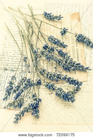 Dried Lavender Flowers And Old Love Letters