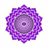 picture of kundalini  - Illustration of a purple crown chakra mandala - JPG