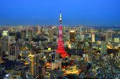 image of kanto  - Tokyo city view visible on the horizon - JPG