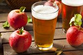 stock photo of cider apples  - Hard Apple Cider Ale Ready to Drink