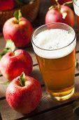 image of cider apples  - Hard Apple Cider Ale Ready to Drink - JPG