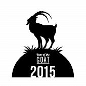foto of goat horns  - Year of the Goat - JPG