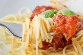 pic of basil leaves  - A bowl of spaghetti pasta tomato sauce and basil leaves with cheese with close - JPG