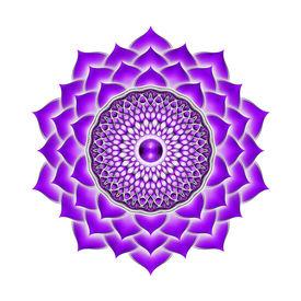 stock photo of tantra  - Illustration of a purple crown chakra mandala - JPG