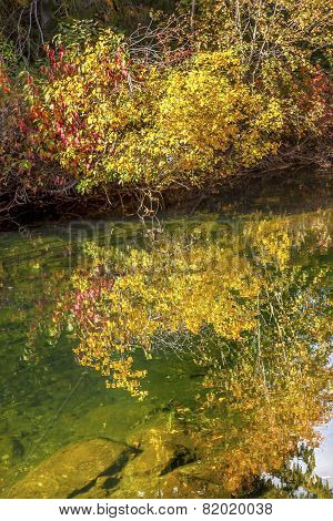 Fall Colors Green Water Reflection Abstract Wenatchee River Washington