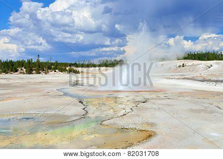 Erupting Geyser In Norris Geyser Basin In Yellowstone National Park, Wyoming