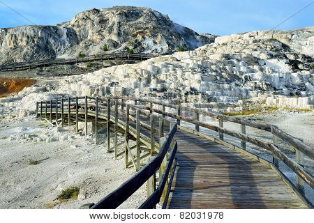 Walkway Through Minerva Terrace In Mammoth Hot Springs Area Of Yellowstone National Park, Wyoming