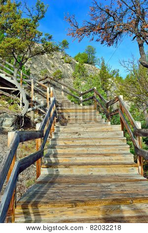 Wooden Walkway Through The Mammoth Hot Springs Area Of Yellowstone National Park, Wyoming