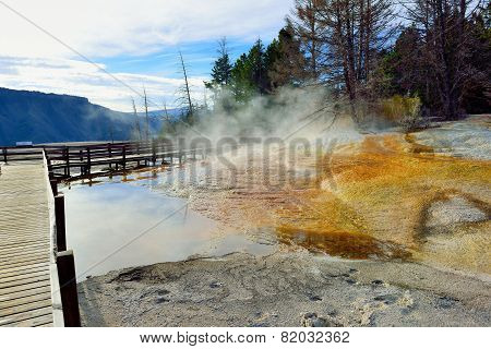 Walkway Through Mammoth Hot Springs Area Of Yellowstone National Park, Wyoming