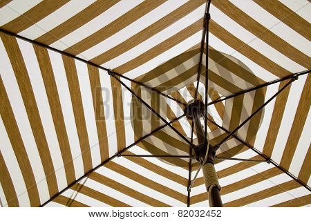 Under The Canvas Umbrella.