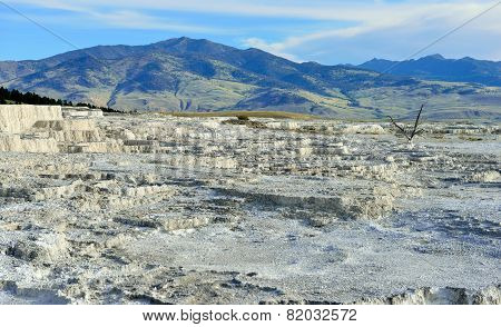 Plateau In Mammoth Hot Springs Area Of Yellowstone National Park, Wyoming