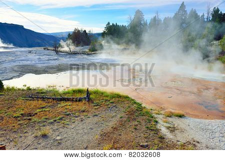 Steam In Mammoth Hot Springs Area Of Yellowstone National Park, Wyoming