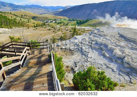 Trail Along The Grassy Spring In Mammoth Hot Springs Area Of Yellowstone National Park, Wyoming