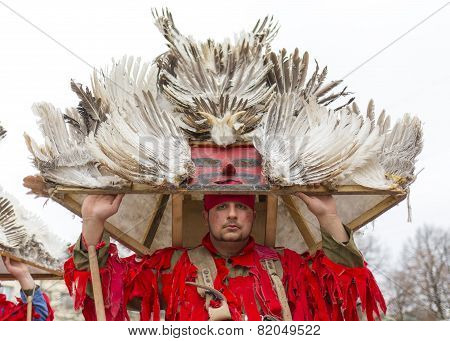 Feather Mask Costume