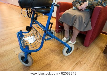 Grandma With Rollator