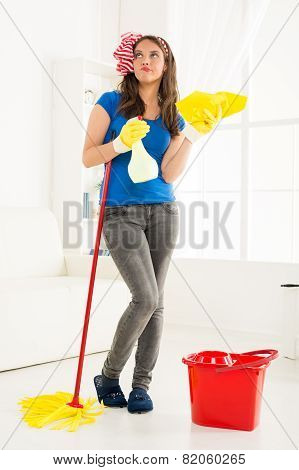 Young Housewife With Cleaning Equipment