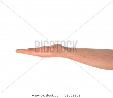 Opened palm hand gesture isolated