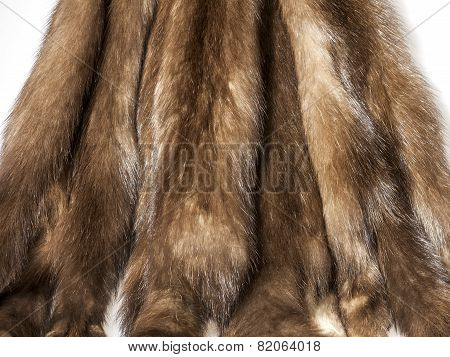 Skins of a sable