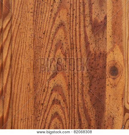 Moldy wooden texture fragment