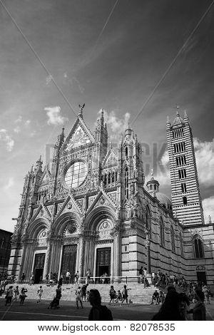 Duomo of Siena. BW image
