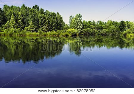 Lomellina, little artificial fishing lake. Color image