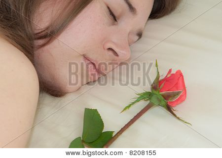 Young Woman Sleeping And A Rose