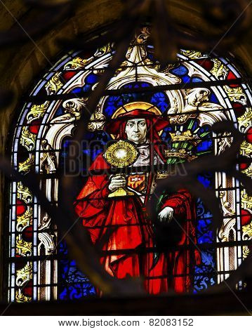 Red Cardinal Catholic Church Stained Glass Salamanca New Cathedral Spain