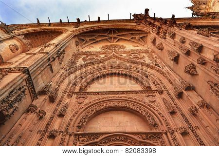 Stone Doorway Facade New Salamanca Cathedral Spain
