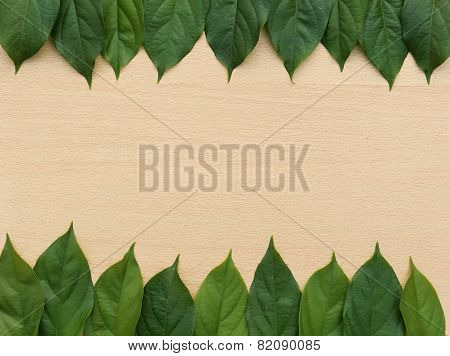 Header And Footer Border From Fresh Leaf